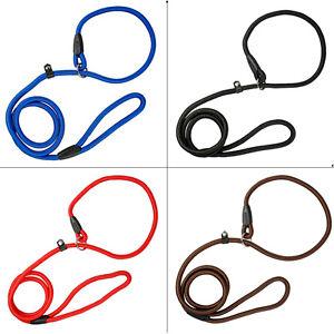 Nylon Rope Slip Dog Lead Pet Collar Walking Training Outdoor Show Leash S/M/L