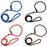 Nylon Rope Slip Dog Lead Pet Collar Walking Training Show Leash S/M/L 4 Colors