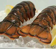 COLD WATER CANADIAN  LOBSTER TAILS 4 - 6 OUNCES EACH SWEET & MEATY 5 LBS