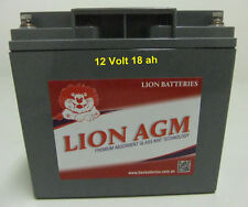 LION PREMIUM ELECTRIC VEHICLE AGM BATTERY - 12V/18Ahr - express courier to door