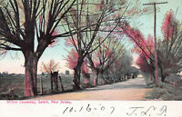 Willow Causeway, Salem, New Jersey, Early Postcard, Used in 1907
