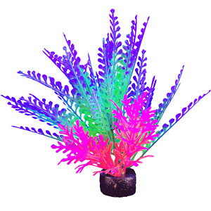Marina iGlo Plant - 14cm - Aquarium Plant