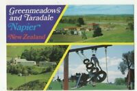New Zealand Greenmeadows & Taradale Napier 6 x 4 Postcard 253c