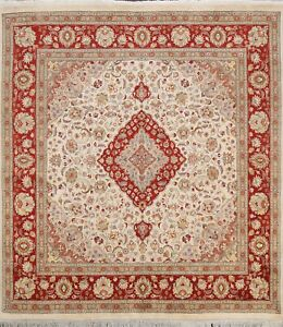 Vegetable Dye Royal-Tebriz Oriental Area Rug Hand-knotted Wool IVORY 7x7 Square