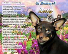 Miniature Pinscher Dog Memorial-Rainbow Bridge Poem-Personalized w/Pet's Name