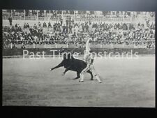 Old PC - BULL FIGHTER / FIGHTING, The Bull Killer Playing with the Bull