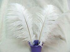 10Pcs White ostrich feathers wedding party decorations 25-30cm TM05