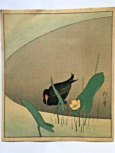 Japanese print ukiyo-e revival woodblock Sakai Hoitsu Moorhen & Lily circa 1930