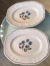 "Pair Hyde Park Kensington Staffordshire Ironstone 14"" Oval Platter Blue Flowers"