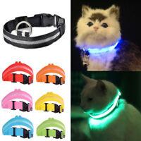 Light Up Cat Safety Collar Pet Kitten Flashing Battery Glow LED Adjustable Dark