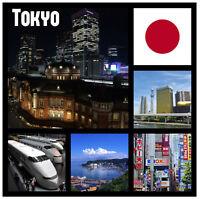 Tokyo,GIAPPONE - souvenir gadget quadrato CALAMITA FRIGO - Viste / REGALI /