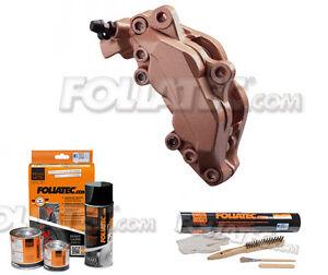 Foliatec Bremssattellack-Set kupfer metallic 2171 vintage + Montageset 2199