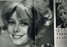 Coupure de presse Clipping 1964   CATHERINE DENEUVE  (6 pages)