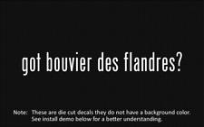 (2x) got bouvier des flandres? Sticker Die Cut Decal