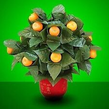 15 Blooming Oranges - Remote Control -Stage Magic,Magic Trick