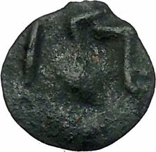ISTROS Thrace 500BC Wheel Money Authentic Ancient Greek Coin BLACK SEA i46832