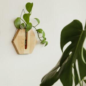 Wooden Wall Decor, Wall Plant Hanger, Hanging Vase, Housewarming gift, Plant pot