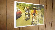 Eddy Merckx Tour de France Legend COLOUR POSTER