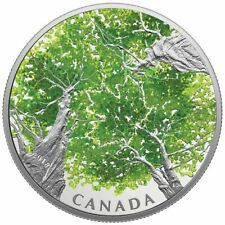 2018 Canadian Canopy: The Maple Leaf $30 Fine Silver Coin
