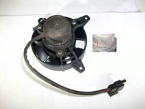 Lüfter Ventilator Kühler Derbi GP1 250 i (DE12)