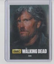 Walking Dead Season 4 Part 2 Trading Card Character #C18 Joe