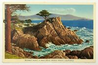 California Postcard CA Midway Point 17 Mile Drive Pebble Beach Rocky Coast