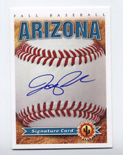 2011 Arizona Fall League AUTO card JOE PANIK Giants