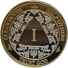24K Gold & Sterling Silver 1 Year AA Medallion - Bi-Plate Fancy One Year Chip/Co