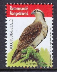 Belgium 2011 Fish Eagle Mint MNH