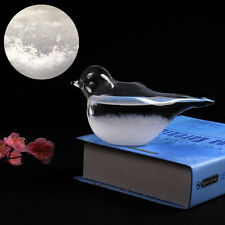 Weather Forecast Crystal Drop Water Bird Shape Storm Glass Home Office Toy Decor