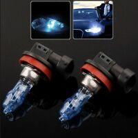 HOD H11 Halogen Bulb, Super White Car Headlight Bulb, 12 V / 100W, 6000K (Pair)