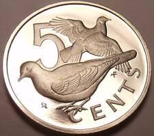 Cameo Proof British Virgin Islands 1973 5 Cents~Zenaida Doves~1st Year~Free Ship