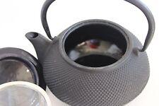 Cast Iron Enamel Tea Kettle Pot