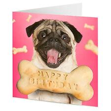 Pug Perro Con Hueso De Perro mensaje Feliz Cumpleaños Tarjeta
