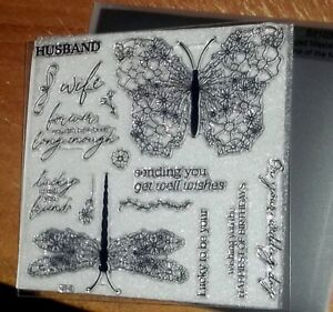 CTMH S2103 WINGED MASTERPIECE ~ Lacy Butterfly,Dragonfly, on your wedding day