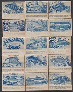 CIGARETTE CARDS Carreras 1954 British Fish - complete set