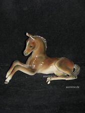 +# A002681_15 Goebel Archiv Muster Cortendorf Pferd Horse Cheval Caballo 273