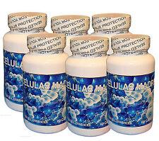 (6) Celulas Madres, Biomatrix, Bioxcell Madre Cell Plus AFA Bioxtron Health Stem