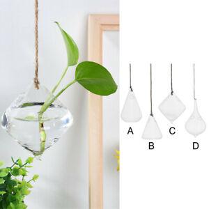 Glass Hanging Ball Vase Flower Plant Pot Terrarium Container Wedding Decor UK