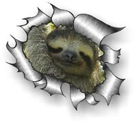 CLASSIC Ripped Open Torn Metal Rip & Cute Adorable Sloth face vinyl car sticker