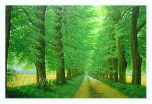 Stretched Hand Painted Oil Painting 20*24 Inch/51*61cm Ready To Hang C02