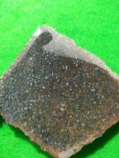 1 Small Slab of Nice Dinosaur Bone- 1 oz.