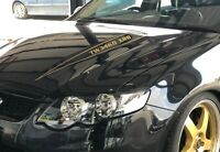 CUSTOM KILLER GRAFFIX OUTLINE BONNET BULGE DECALS FORD FG XR8 GT GS YOUR TEXT