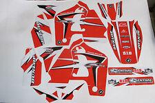FLU PTS2 TEAM  TEAM HONDA GRAPHICS CR500 CR500R  1991-2001