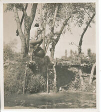 Sepia Original Print 1920s Collectable Antique Photographs (Pre-1940)