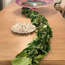Bush Ivy Green Garland - 25 ft.