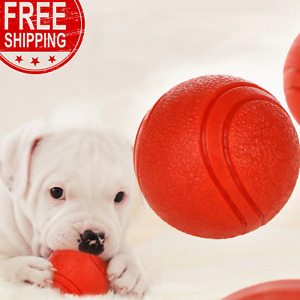 Dog Toy Rubber Ball Bite-resistant Dogs Puppy Teddy Pitbull Pet Supplies