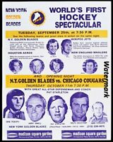 RARE 1973 WHA New York Golden Blades Brochure 8 X 10 Reproduction Photo Picture