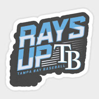 Tampa Bay Rays vinyl sticker for skateboard luggage laptop tumblers car a