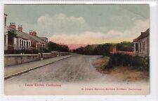 TANZIE KNOWE, CAMBUSLANG: Lanarkshire postcard (C14946)